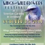 Wings & Wildflowers Show Opening
